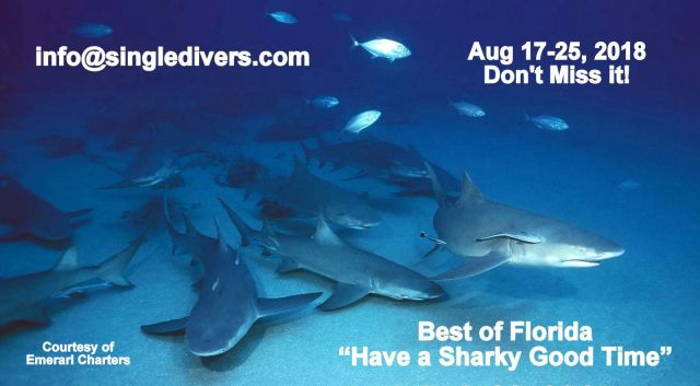 2018 Sharks from Randy's Site